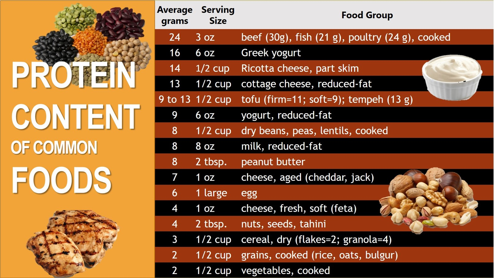 Protein Content Of Common Foods