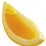 orange slice no background2