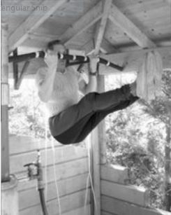 80-year-old Norwegian performing his strength training program. (from Fig 1., Case Reports in Medicine Volume 2015 (2015)).