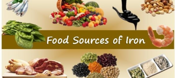 What foods are good sources of iron sheila kealey what foods are good sources of iron workwithnaturefo