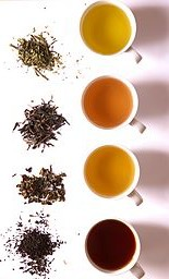 256px-Tea_in_different_grade_of_fermentation